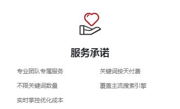 专业网页设计企�业官网优化-卓秀优化螳螂虫精软件官网
