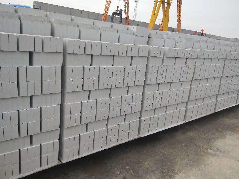 白银青砖-甘南蒸压粉煤灰砖-甘南蒸压粉煤灰砖厂家