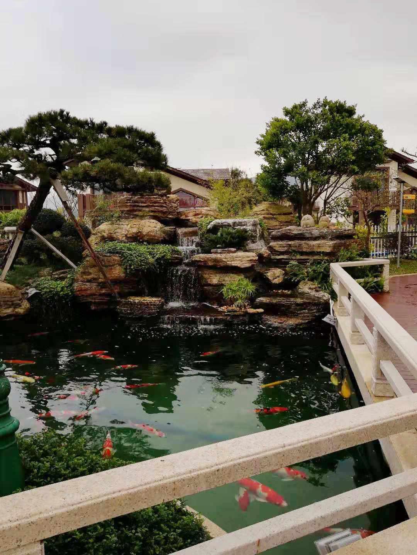 家庭鱼池过滤-观赏鱼池过滤系统-鱼池水循环过滤