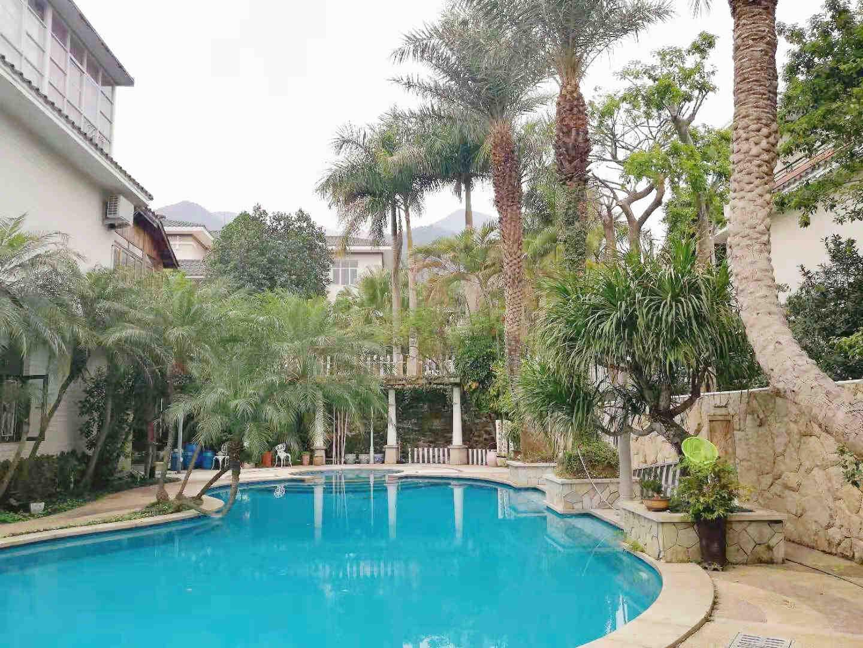 私家庭院景观设计-哪里有提供泳池设计