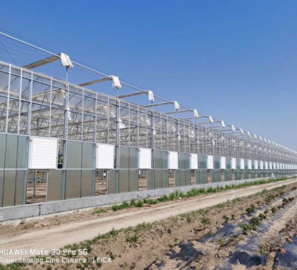 玻璃大棚建造商|高质量的玻璃温室推荐