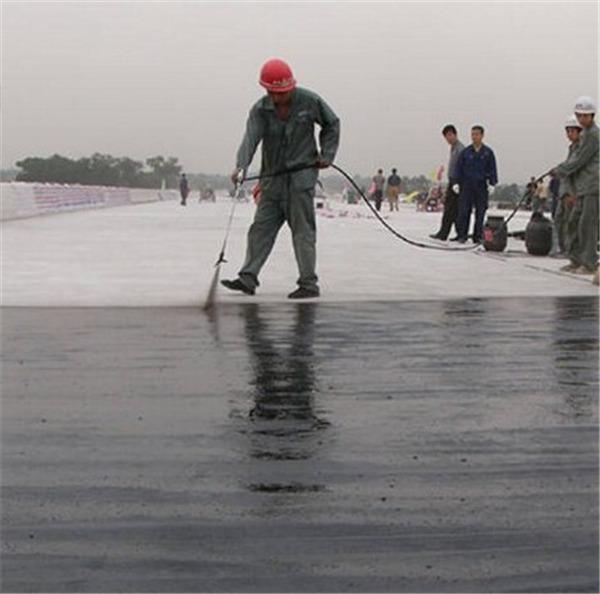 路桥专用水性沥青基防水涂料多少钱|野狼社区论坛可以买到实用的防水涂料