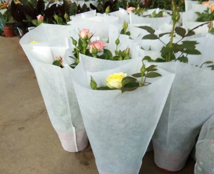 无纺布梯形袋—花卉梯形无纺布袋