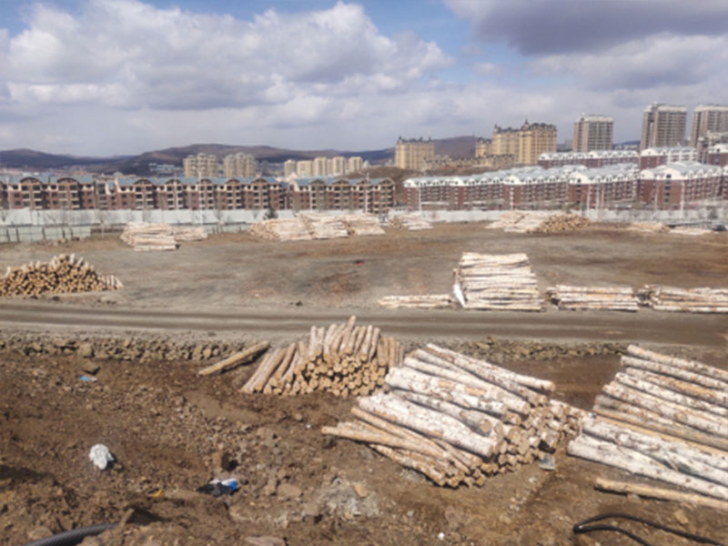 營口楓樺廠家-俄羅斯原木進口生產廠
