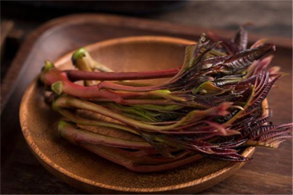 怎样腌制红香椿?——红香椿园艺场——韵竹