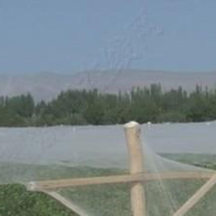 山东叶菜防虫网报价-甘肃叶菜防虫网生产厂家