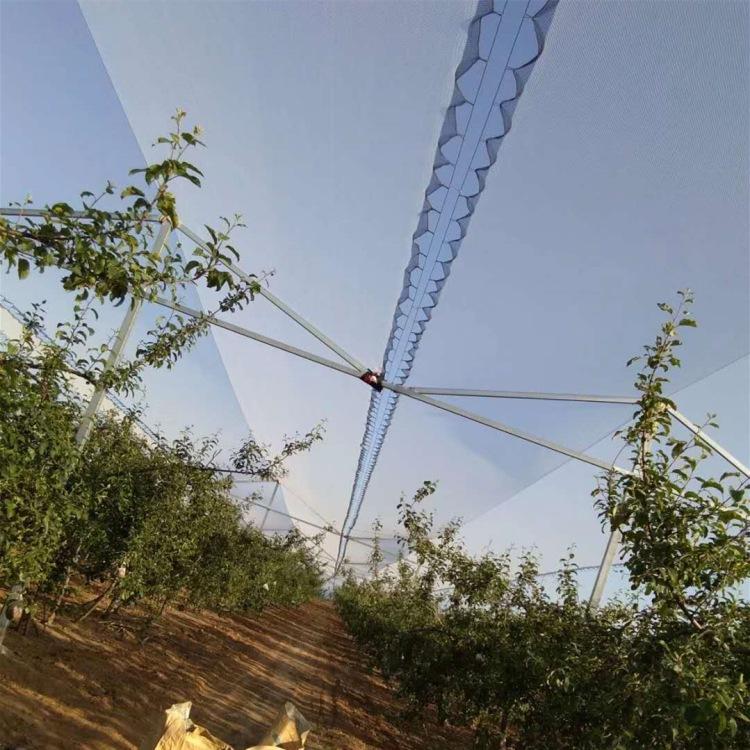 辽宁塑料防虫网生产厂家-陕西塑料防虫网价格