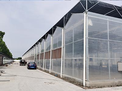 智能玻璃溫室建造商-連棟花卉大棚定做-連棟花卉大棚設計