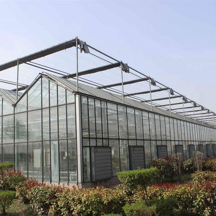 连栋大棚工程-景观温室定制-景观温室定做