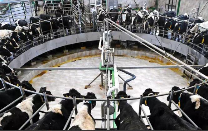 养猪场废水处理设备//养殖污水处理设备