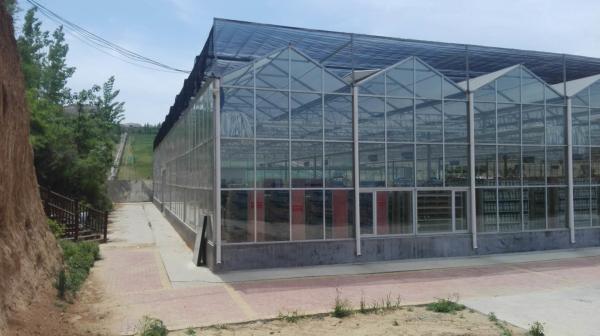 景观温室建造,景观温室建设,景观温室设计