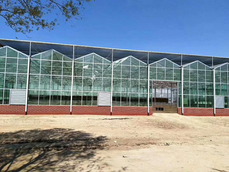 玻璃板温室设计,玻璃板温室报价,玻璃板温室建造商