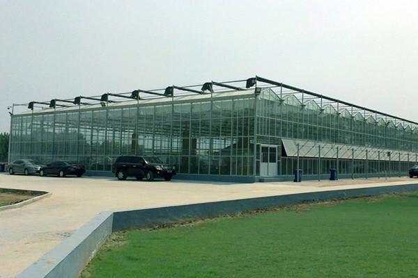 日光温室建设,承包玻璃连栋温室建设,玻璃连栋温室建设