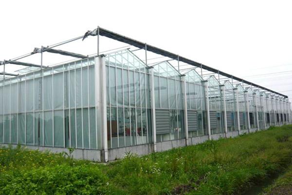 智能温室建设,大棚温室建设,温室大棚建设