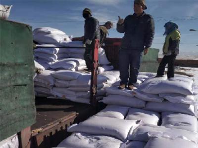 青海黑麥草籽-西寧燕麥種子價格-西藏燕麥種子價格