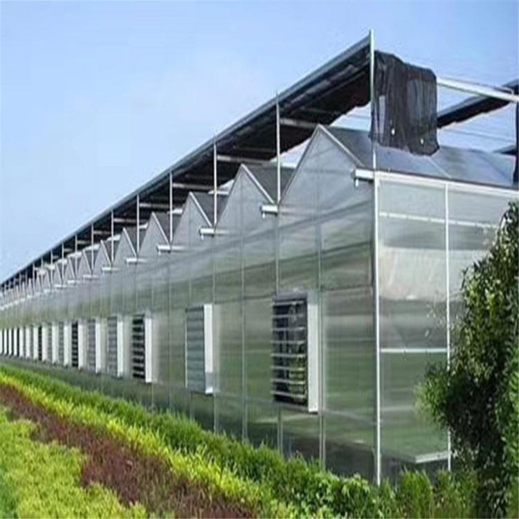 陽光板大棚建造-黑龍江陽光溫室大棚-山東陽光溫室大棚