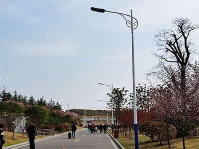 青海草坪灯价格-武威LED路灯安装-武威LED路灯定制