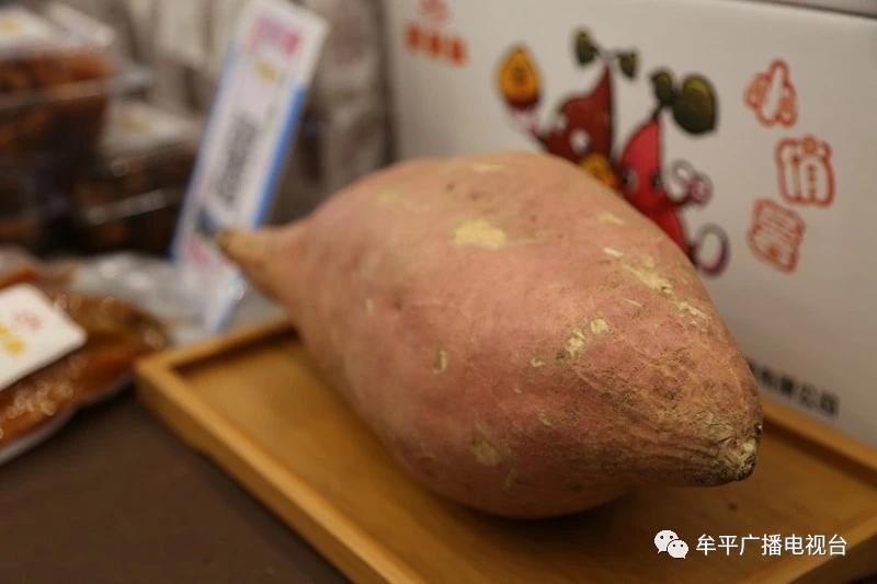 烟薯25号_烟台红薯_产地直销_安心食用_烟台昆嵛山珍