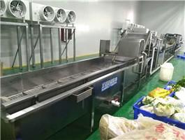果蔬清洗流水线,果蔬清洗流水线哪里有,果蔬清洗流水线加工