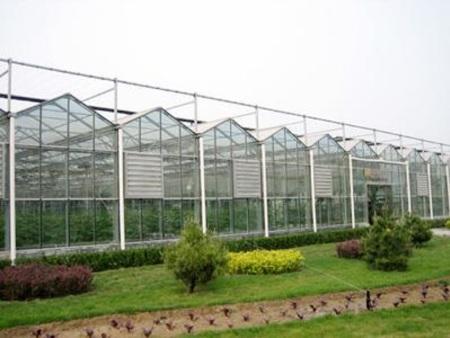 玻璃连栋温室——智能玻璃温室