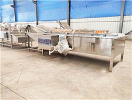 桑芽菜加工设备,桑芽菜加工设备多少钱,桑芽菜加工设备生产厂商