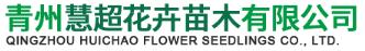 青州慧超花卉苗木有限公司