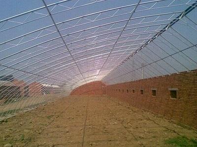 养殖大棚——养殖温室