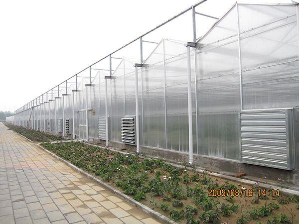 北京溫室工程加盟-溫室大棚廠家