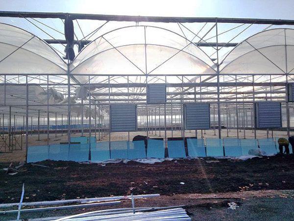 新疆溫室工程造價-內蒙古溫室工程-內蒙古溫室工程技術