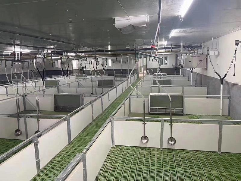 云南自动化养殖设备-吉林养猪设备厂家-吉林养猪设备厂