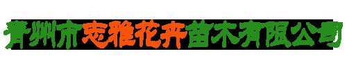 青州市志雅花卉苗木有限公司
