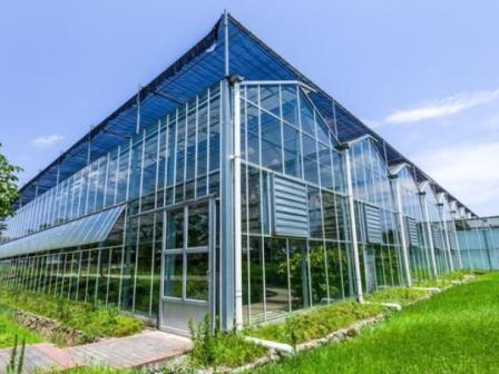 玻璃连栋温室建设,玻璃连栋温室成本,玻璃连栋温室