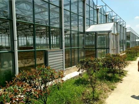 玻璃连栋温室造价,玻璃连栋温室价格,玻璃连栋温室