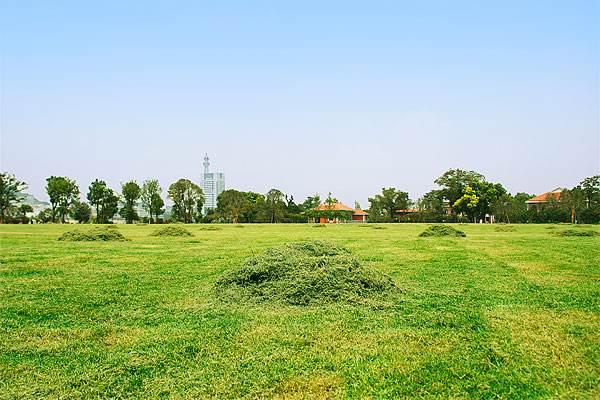 白山草坪厂家-四平仿真草坪-葫芦岛人造草坪价格