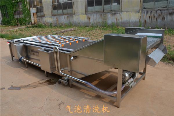 水果蔬菜清洗机加工-批发气泡清洗机-不锈钢水果蔬菜清洗机