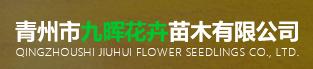 青州市九晖花卉苗木有限公司