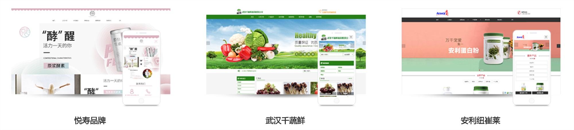 品牌网站建设平台-物流网站建设平台-保险网站建设平台