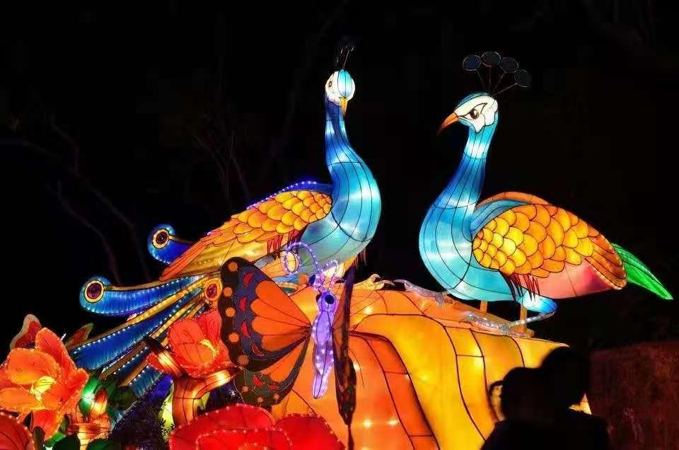 徐州大型灯光节公司-江苏大型灯光节价格范围