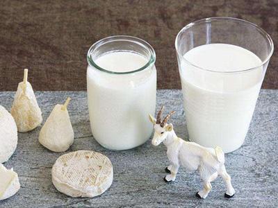 泉州每天送新鲜羊奶怎么订-泉州巴氏鲜牛奶怎么订购