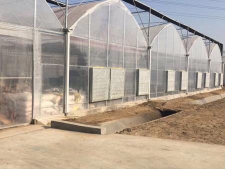 【以诚相待】农用连栋薄膜温室材料!花卉连栋薄膜温室规格