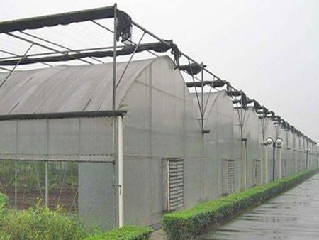 农业大棚承接-福建农业大棚-福建农业大棚承建商