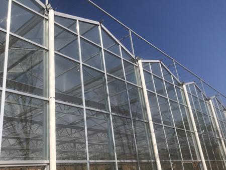 河北玻璃温室施工-高质量的玻璃温室推荐