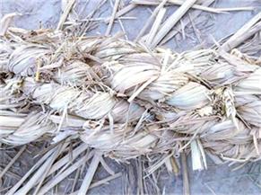 稻草绳厂家批发|新乡实惠的稻草绳哪有卖