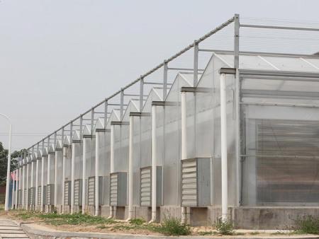 陽光板溫室建設-浙江陽光板溫室工程建設-浙江陽光板溫室施工