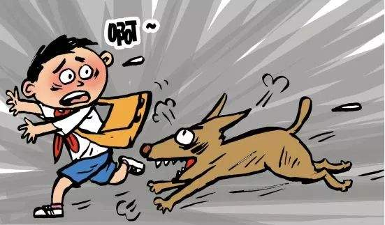 城管局宠物管理系统,城管局犬类管理系统,城管局宠物管理小程序