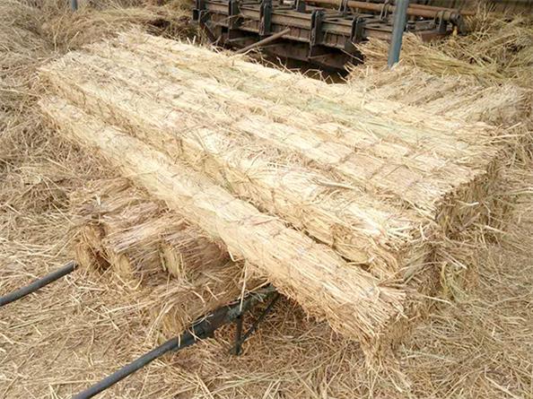 新鄉草墩生產商|為您推薦合格的防滑草墊