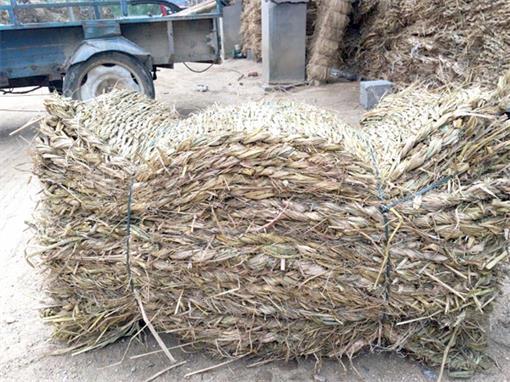 新乡异形草支垫-新乡草棒价格范围-新乡草棒哪里有