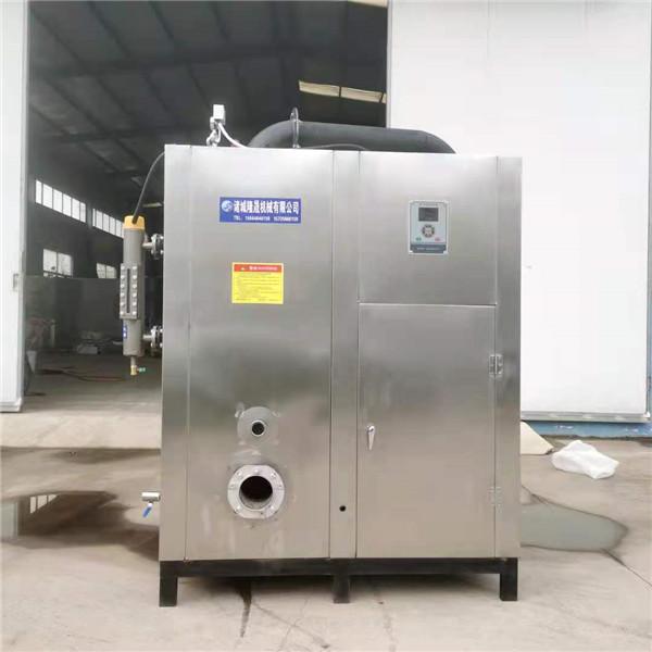 全自動蒸汽發生器/全自動蒸汽鍋爐/醫用電蒸汽發生器