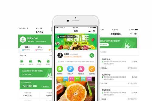 肇庆市各类小程序开发成本