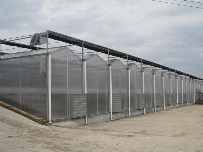 连栋阳光板温室//阳光板温室承建商